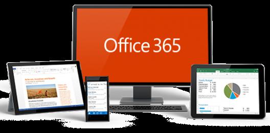 office365